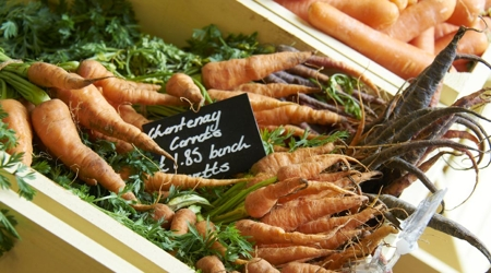Carrot from Holwood Farm